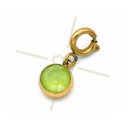 Charms Stainless Steel with clasp and Swarovski Strass Light Green