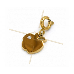 Charms edelstaal Gold Plated Appel met slotje en strass Swarovski