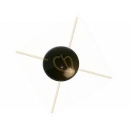 Regaliz mosterdgeel 6*10mm