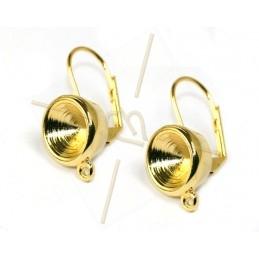 oorbellen met ringetje voor...
